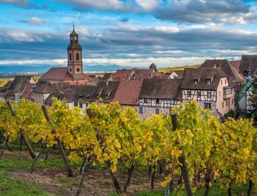 Roteiro de vinho na França – Muito mais que Bordeaux e Champagne