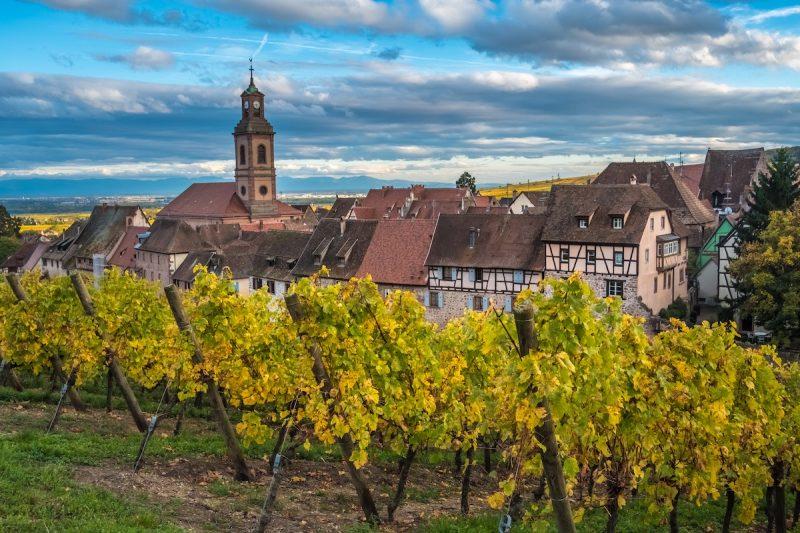 Roteiro de vinho na França