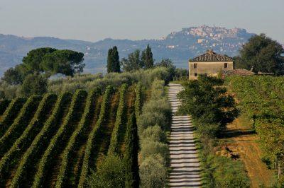 Roteiro de vinhos na toscana