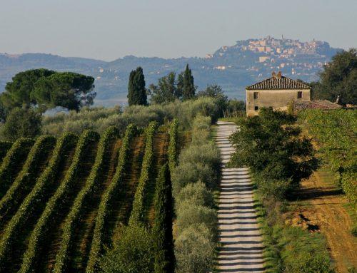 Roteiro de vinhos na toscana: o melhor da Itália
