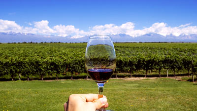 Vinhos Argentinos.
