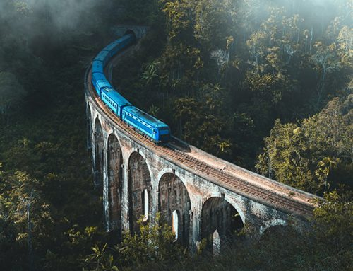 Viagem de trem da Sérvia a Montenegro: um passeio deslumbrante!